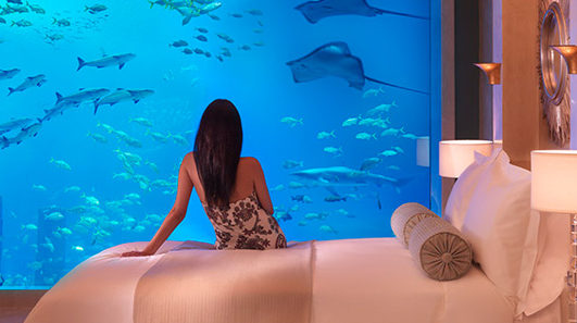 5 star  Atlantis The Palm - Dubai (4 Nights)